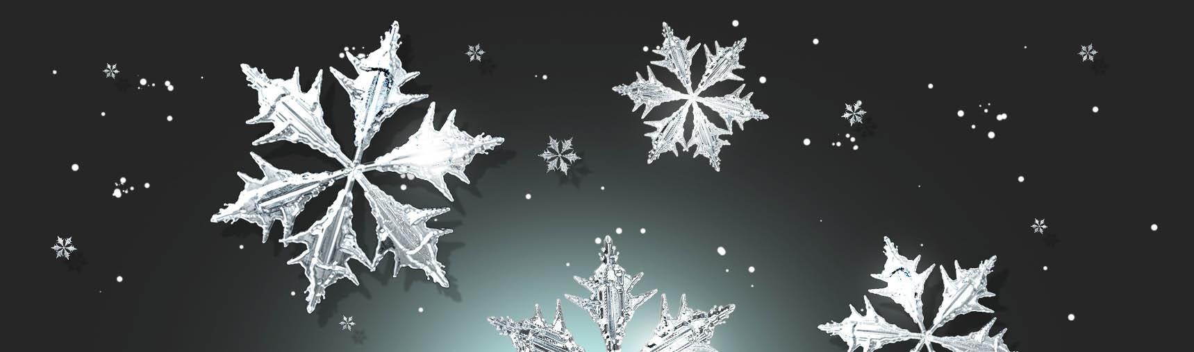 Free 3D Snowflake Renders