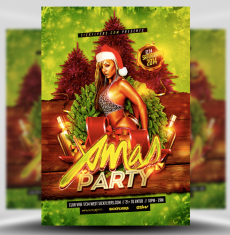 Xmas Party Flyer Template 1