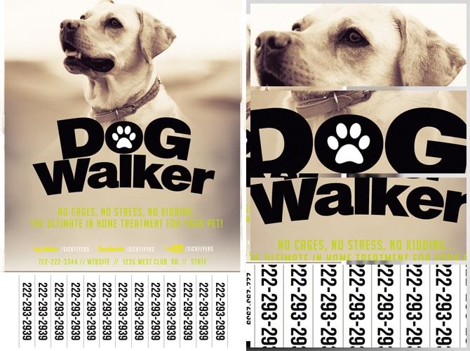 professional dog walker flyer template flyerheroes. Black Bedroom Furniture Sets. Home Design Ideas